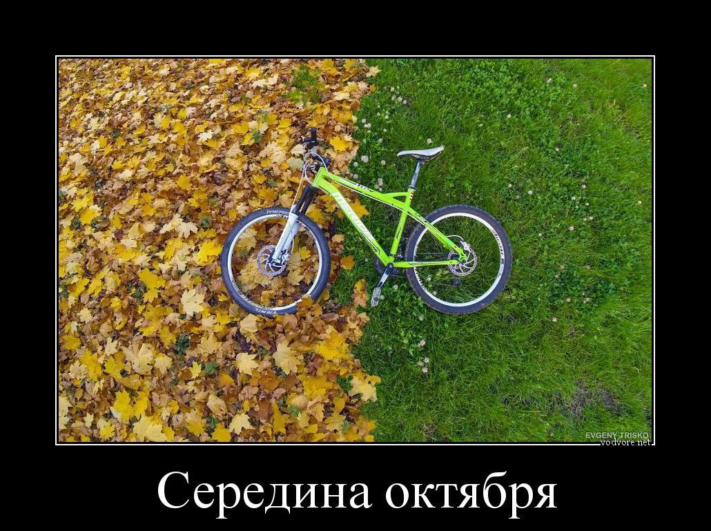 Демотиваторы о велосипеде