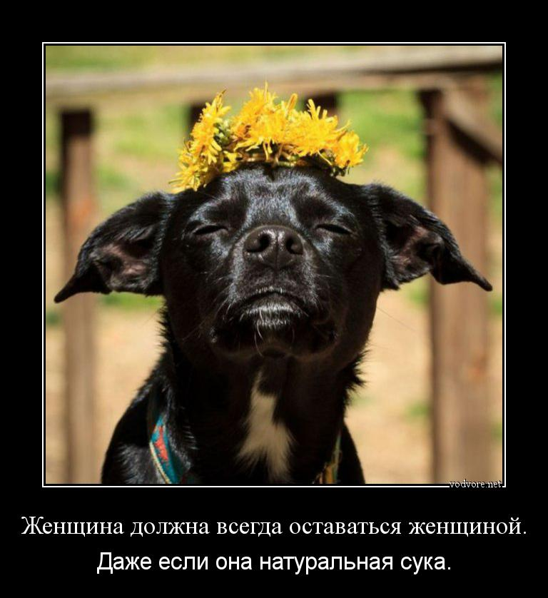 Чеченские девушки сучки 4 фотография