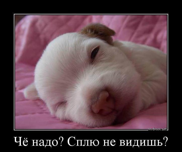 Раздеть спящую фото 14 фотография
