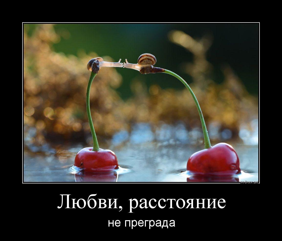 Люблю тебя открытка на расстоянии, полгода ребенку советская