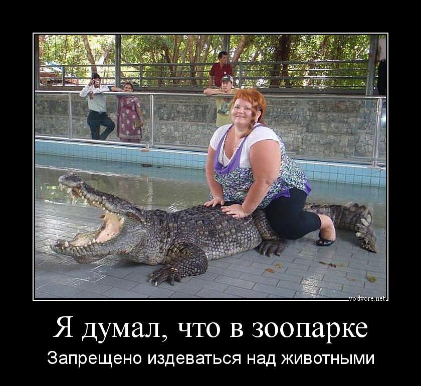 зоопарк не значит безопасность