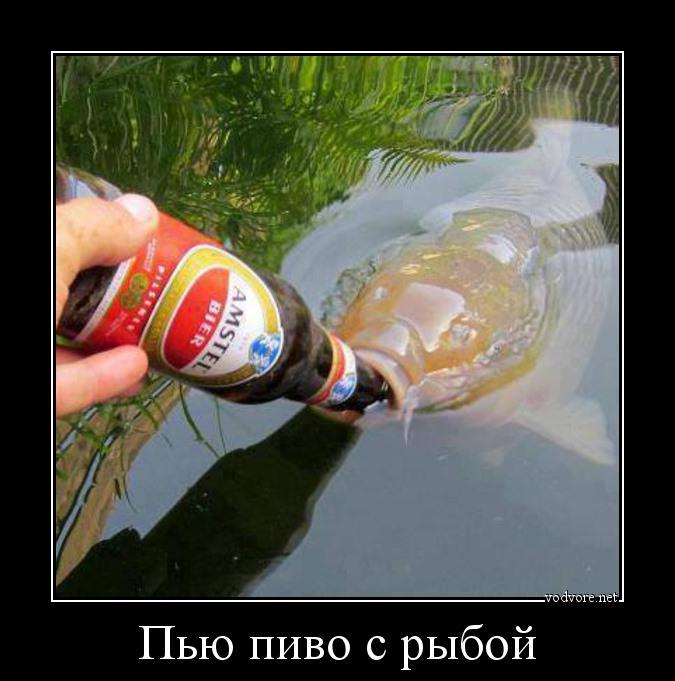 Пьют пускают в попу рыьок 18 фотография