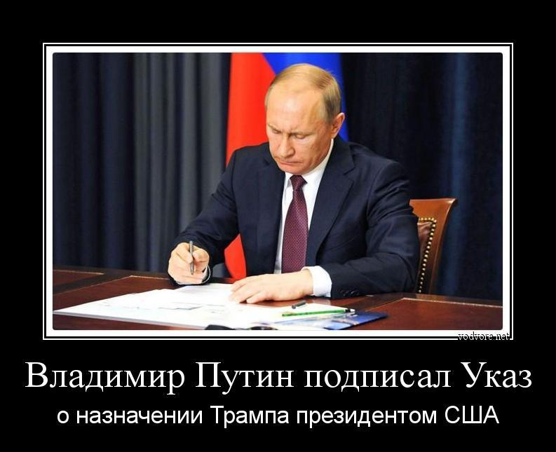 Картинки по запросу демотиватор путин и трамп