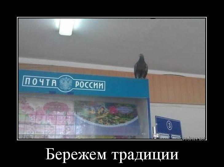 cr_862525283402313882029.jpg