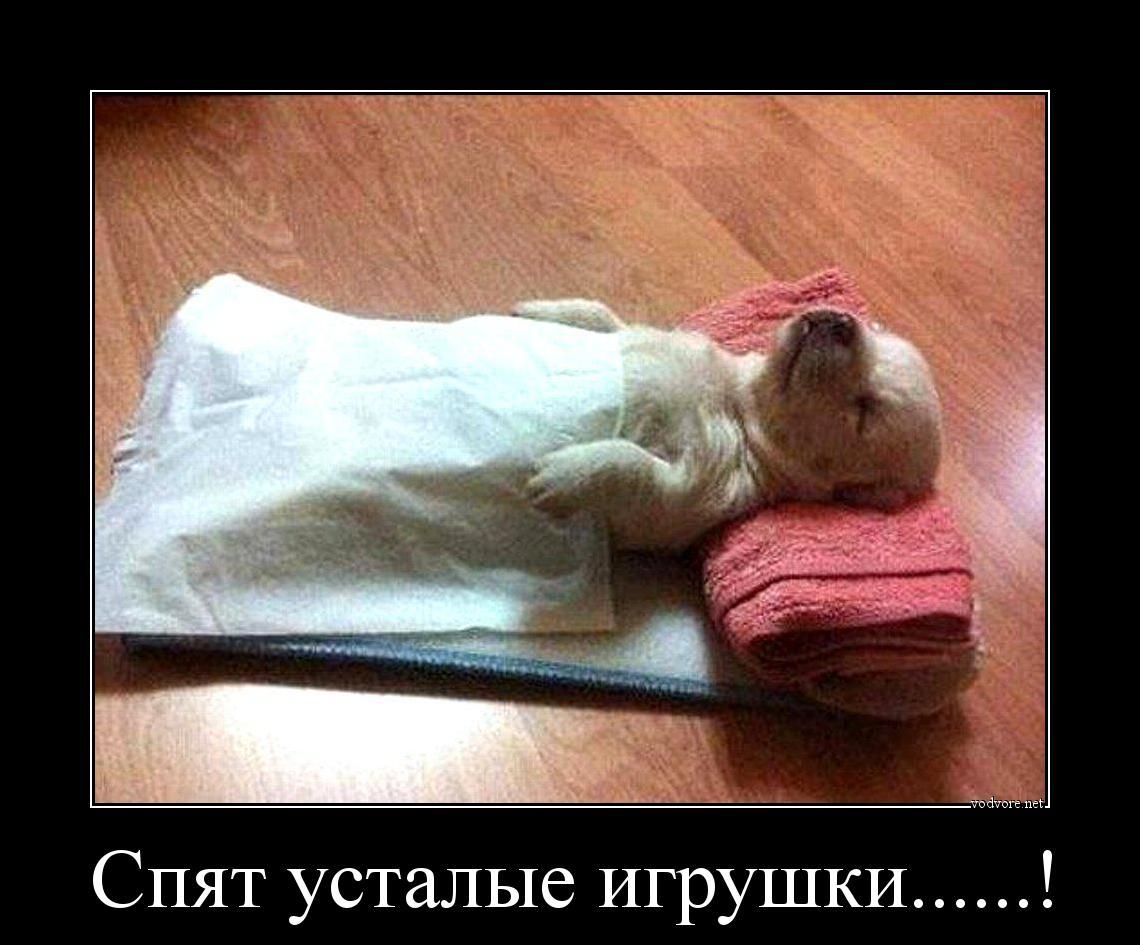 Раздеть спящую фото 7 фотография