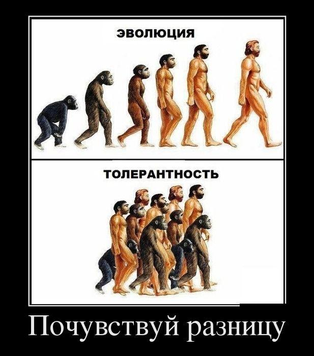 Evoliucija / TolerancijaPajusk skirtumą!...
