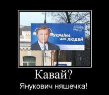 Власенко грозит от 6 месяцев ареста до 2 лет ограничения свободы, - прокурор - Цензор.НЕТ 971
