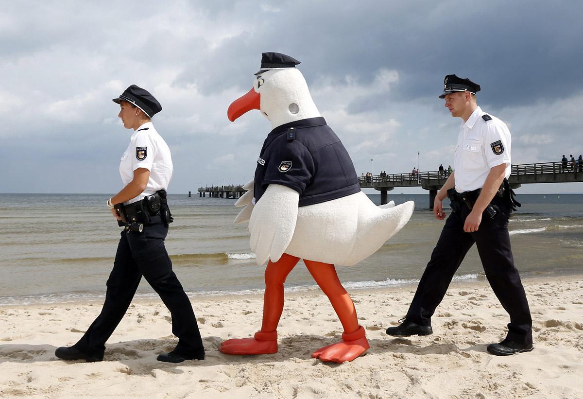 Картинки прикольных полицейских