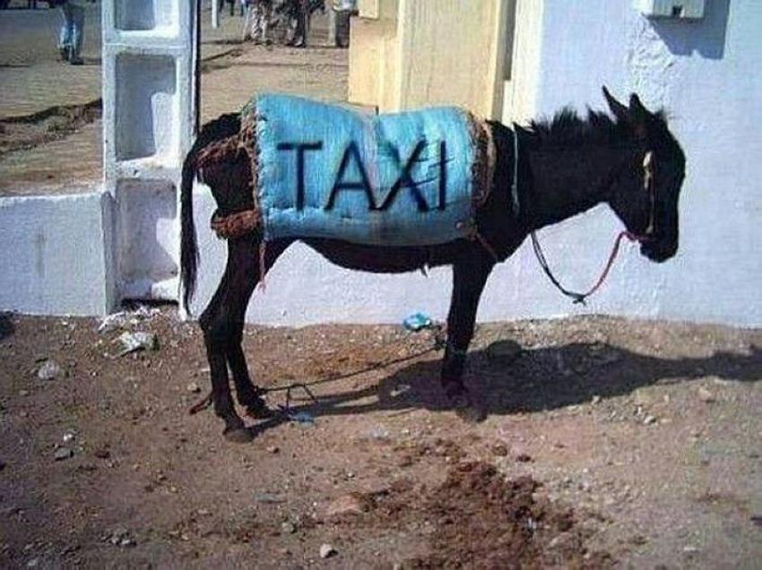 Фото рриколы с такси