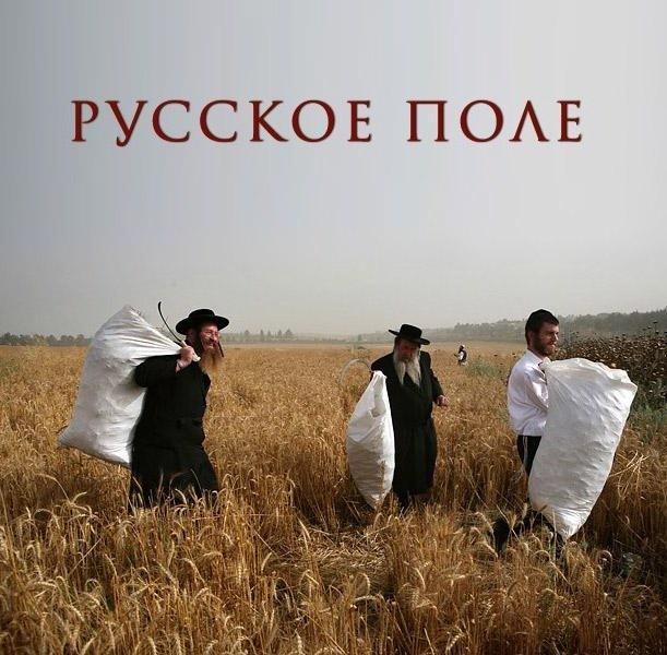 действенная, картинка русское поле евреи посвятившие