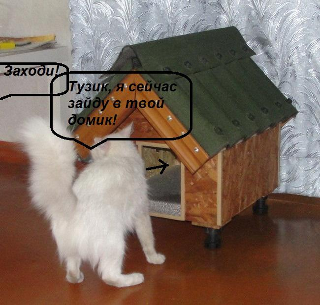 Будка для кошки своими руками